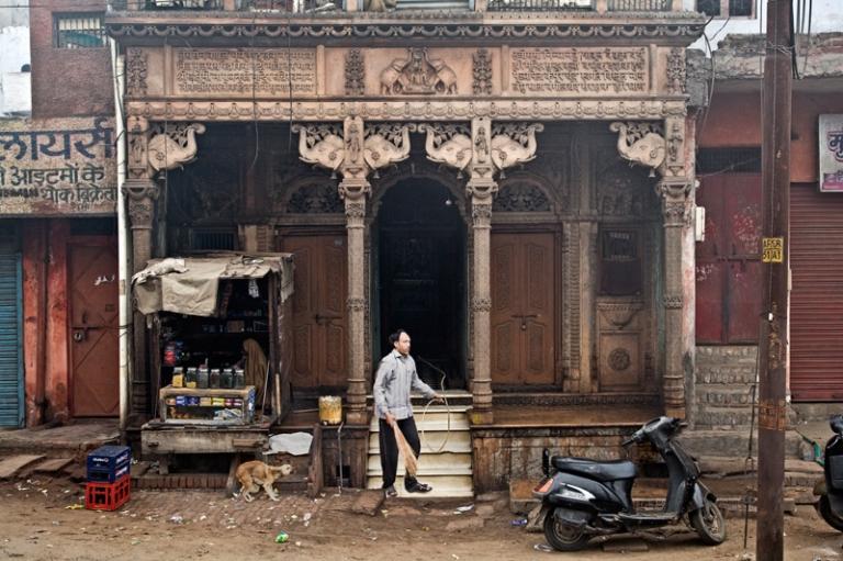 Indien India Tiger Ranthambhore Bandhavgarh New Delhi Agra Taj Mahal