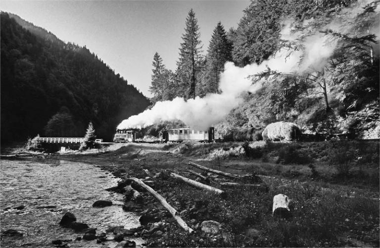 Rumänien Karpaten Wassertal Eisenbahn Wald Holz Dampflok