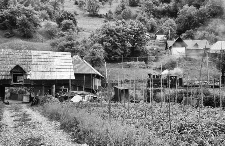 Rumänien Karpaten Wassertal Eisenbahn Wald Holz Dampflok Viseu de Sus