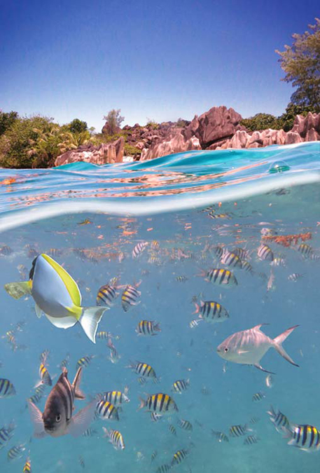 Seychellen seychelles seascape photography bech sunset surise paradise