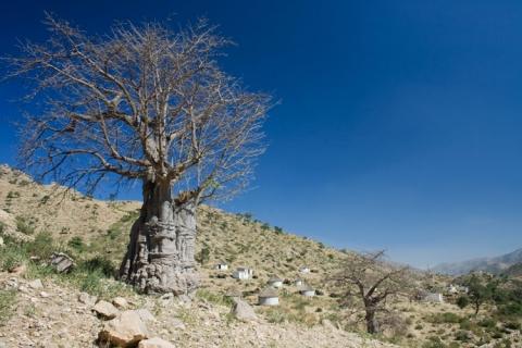 Afrika Eritrea MAERSK Massawa Asmara Zug Dampflok Spende Hilfe Menschen