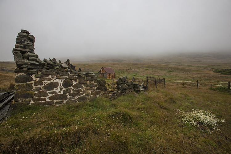 Carcas Island - Falkland Islands