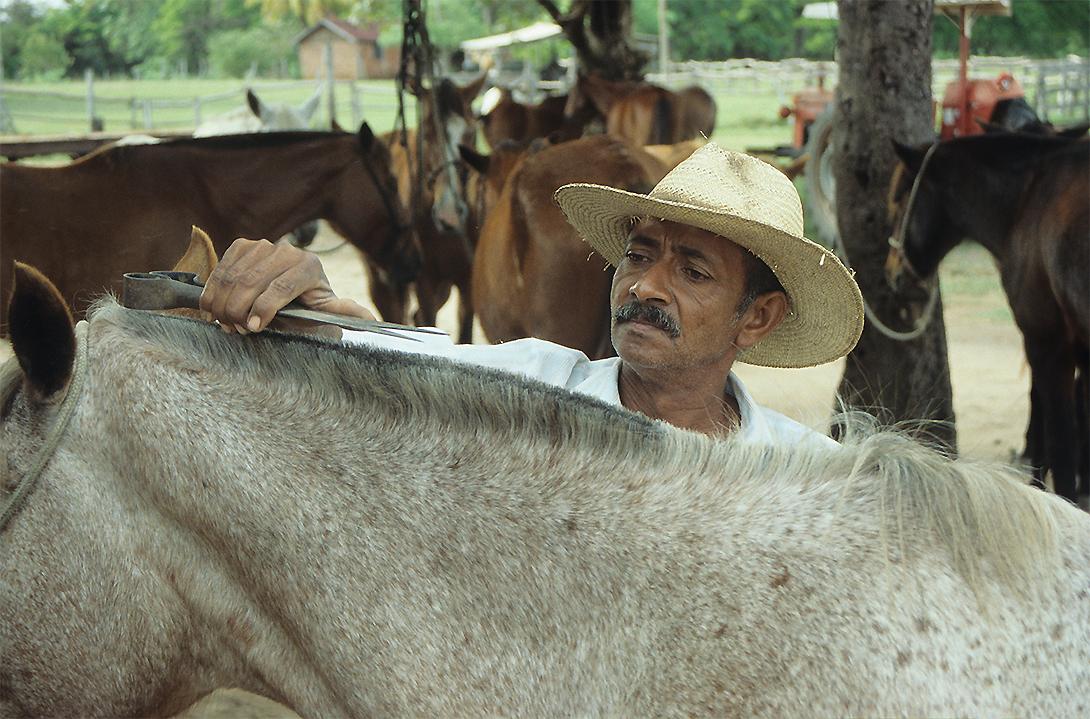 Horse Men - Brasil