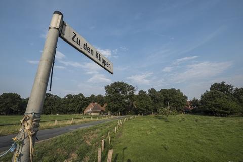 Dörenther Klippen Münsterland Telgte Billerbeck Sommer Landwirtschaft