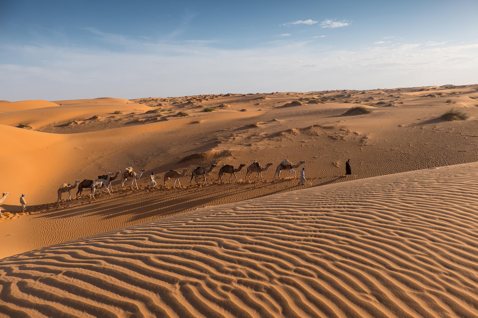 Erg Ouarane - Mauretania